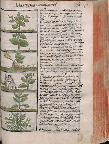 Med. Palat. 220, c. 294r